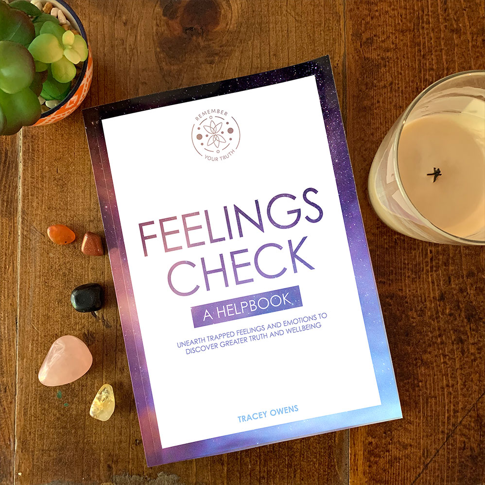 Feeling Check: A Helpbook by Tracey Owens